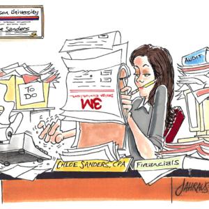 auditor cartoon 1