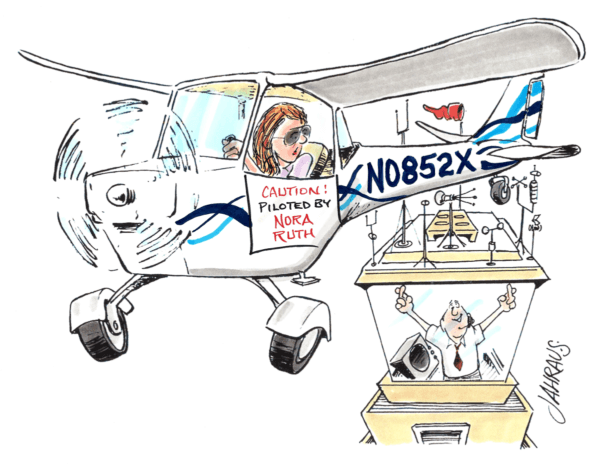 flight cartoon 2
