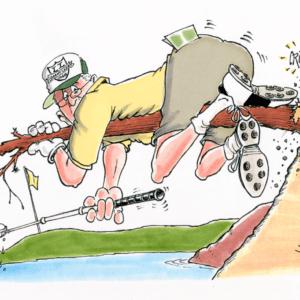 golf ball retrieval cartoon 1